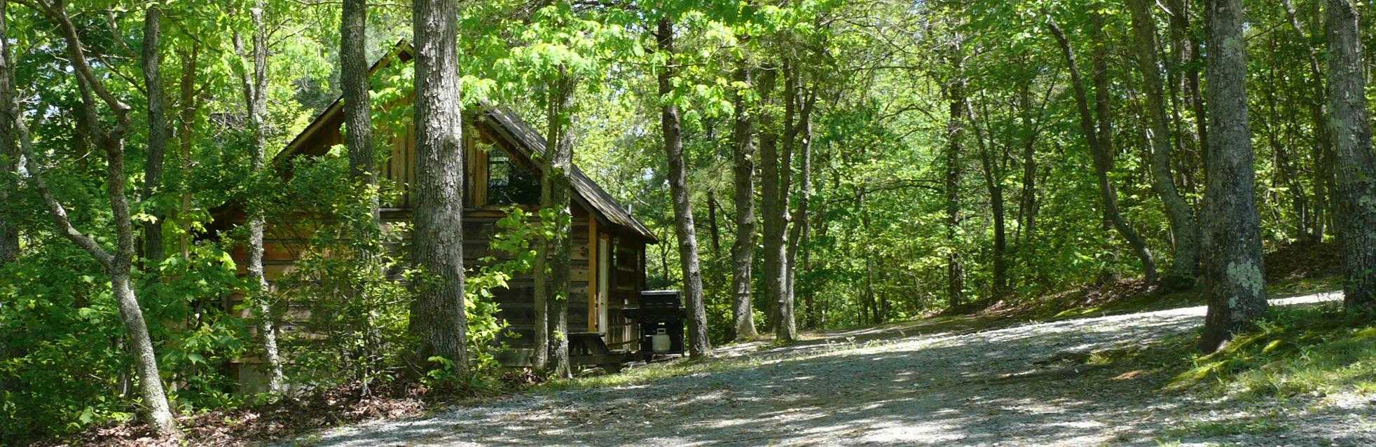 Cabin #4 Pan